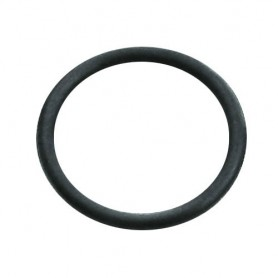 O-Ring Ø 18,3 x 2,4mm, SKS, 10156