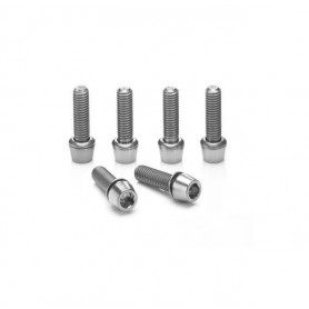 Ritchey WCS C220 Stem screws 6 pieces, stainless steel, silver