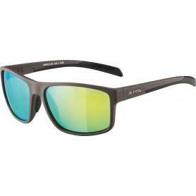 Alpina sunglasses Nacan I frame anthracite matt / glass yellow