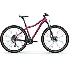 Centurion Backfire Fit Pro 200 MTB 2021 cranberry RH S (43 cm)