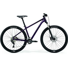 Merida BIG.NINE 300 MTB 2021 purple black frame size XXL (22 inch)