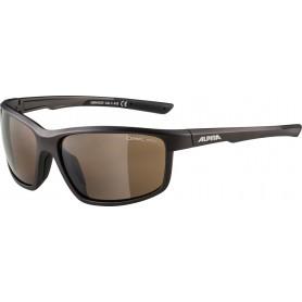 Alpina Sonnenbrille Defey Rahmen tinn matt black Glas brown mirror