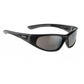 Alpina Sun glasses Flexxy Junior black grey glass Ceramic black
