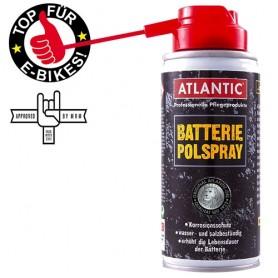 Battery Pole Spray 100 ml Spray Can